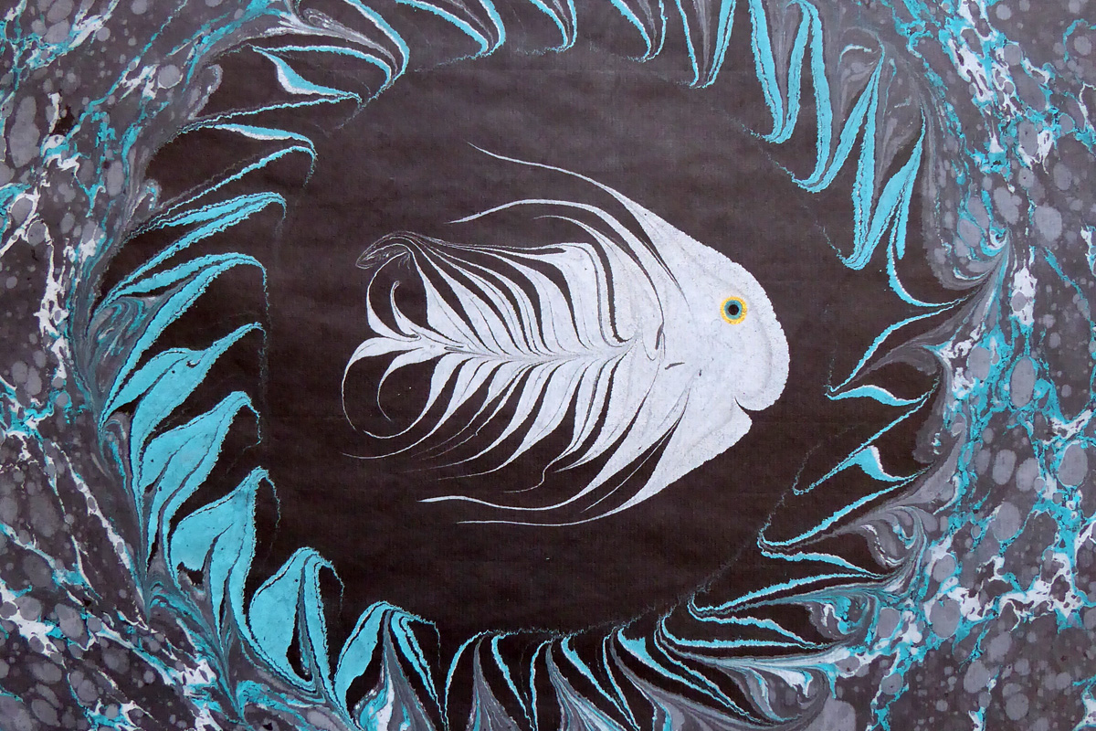 pesci18