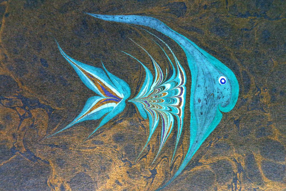 pescipolpi01