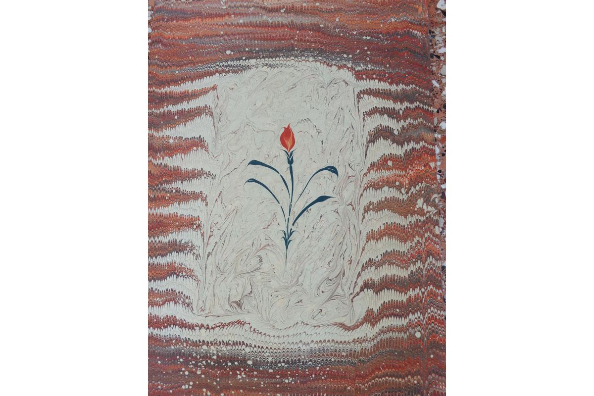 fiori-verticale02